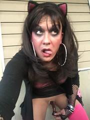Stefani Slutty (stefani_slutty) Tags: stefani slutty slut prostitute hooker whore pussy kitty cat ears pink bra panties thigh high stockings see through top dildo suck cock blow job call girl large hoop earrings lips eyes sensual lust public