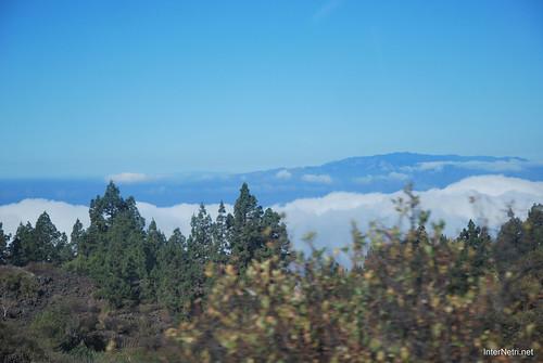 Понад хмарами, Тенеріфе, Канарські острови  InterNetri  010