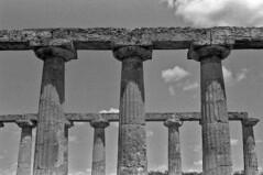 Cielo Metapontino (antonio.secondo) Tags: minolta pancro analog analogphoto berggar blackandwhite film filmphotografy landscapes italy