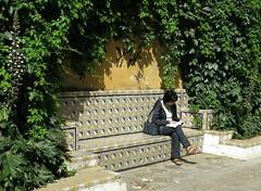 Monday Colours - A Bench in Sevilla (Pushapoze (NMP)) Tags: spain espana espagne bench banc tile carrelage parc hbm happybenchmonday