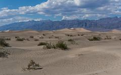 Mesquite Flat Sand Dunes (VoLGio) Tags: deathvalley valledelamuerte nationalpark parquenacional parquenacionaldelvalledelamuerte deathvalleynationalpark park parque mesquiteflatsanddunes sanddunes mesquiteflat mesquite fland sand dunes mesquitesanddunes california usa us estadosunidos unitedstates sony desert desierto 1650 nex6 sony1650 sonynex6