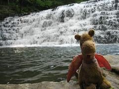 359 (nikoretro) Tags: scorch scorchthetravelingdragon dragon ty beaniebaby travelingtoy traveling toy plush stuffy