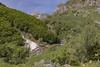 Ordiso 7853 (tonygimenez) Tags: bosque rio agua naturaleza valles montaña cascadas niene