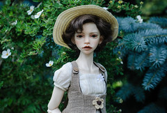 DSC_4747 (peregrina_tyss) Tags: bjd dollstown elf dim annabeth dollinmind