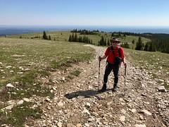 Moose Mountain Hike - Ben at treeline (benlarhome) Tags: kananaskis alberta canada braggcreek moosemountain hike hiking trek trekking trail path