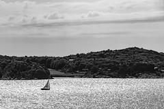 Marstrand - Sverige 2013 (karlheinz klingbeil) Tags: sverige boot northsea meer schweden water monochrome stadt boat wasser marstrand nordsee sweden