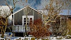 From Iceland. (Tóta. 27.12.1964.) Tags: house trees snow winter iceland ísland