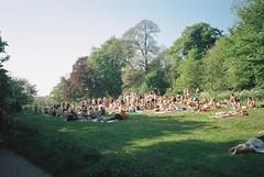 Hampstead Heath (cranjam) Tags: ricoh gr1 gr1v film kodak portra160 uk londra london hampsteadheath hampstead parco park pond highgatemensbathingpond crowd folla gay england