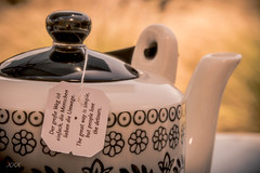Perhaps wisdom is a pot of tea (babs van beieren) Tags: tea teapot outdoor words teabag 7dwf wednesday closeup stilllife