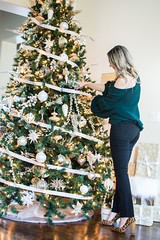 How to Decorate your Christmas tree (lewissuraz) Tags: beauty fashion fat loss fitness food health home decor makeup pets tattoo technology travel