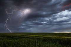 Prairie Light, Beaver Co. Alberta (WherezJeff) Tags: alberta lightning nonsevere storm thunderstorm field d850