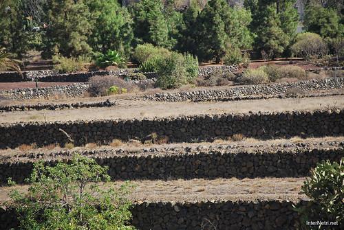 Піраміди в Гуїмар, Тенеріфе, Канари  InterNetri  025