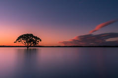 Brighton serenity (neiljphotography) Tags: sunset tranquil landscapes calm twilight cloudscape rawwaters orangesky brisbane trees bluehour peaceful beauty beach