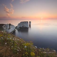 Old Harry Rocks, Dorset (Adrian Wilkinson) Tags: dorset uk landscape oldharryrocks jurassiccoast jurassic sky seascape clouds sunrise sea seastack cliff handfast point handfastpoint chalk isleofpurbeck studland