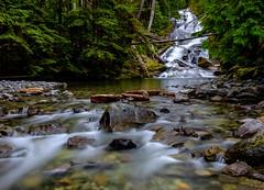 Chenuis Falls (rich trinter photos) Tags: mountrainier washington unitedstates us landscape longexposure northwest trinterphotos richtrinter oldgrowth chenuisfalls