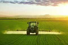 F44F8.jpg (koque2235) Tags: clearsky agriculturalmachinery photographythemes nonurbanscene photography environmentalconservation copyspace toxicsubstance sprinkling landscaped insecticide fertilizer dusk dawn twilight colorimage chemical working spraying growth green colors environment agriculture nature backlit ruralscene outdoors fullframe horizontal image farmer occupation crop cultivated wheat plant sunbeam sunlight lighteffect sunset spring season field meadow landscape land sun farm cropsprayer tractor agriculturalequipment equipment pollution environmentaldamage landvehicle machine