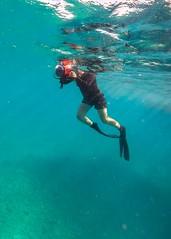 Marcia Snorkeling Heron Island-3 (Quick Shot Photos) Tags: australia canon canoncollective greatbarrierreef heronisland queensland underwater bogie au