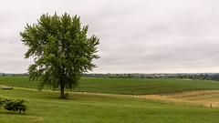 IMG_7005 (inarges) Tags: iowa springbrook