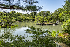 KINKAKUJI - THE GOLDEN TEMPLE (Steven Godwin) Tags: japan kinkakuji buddist buddism golden gardens lake landscape shrine religion reflections