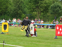 DSCF3794 (SierPinskiA) Tags: ruffordabbeycountrypark rufford knightsofnottingham fujixs1 jousting medieval horse knights goldeneagle falcon