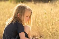 a day remembered... (Alvin Harp) Tags: goldenhour childportrait portrait littlegirl blonde goldenfields sonyilce9 fe70200mmf28 june 2018 naturallight marleesphotoshoot alvinharp