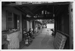 HengMian19 (nickthepluto) Tags: shanghaigp3 zeiss ikon zm biogon 2828 bw d76 film