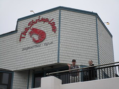 Husband & Daughter Outside The Shrimp Lover Restaurant, Neon Sign, Redondo Beach, CA (classic_film) Tags: restaurant food seafood lunch sign california building signo signage redondobeach southwest southwestern street signe schild skilt seña segno skylt town ocean losangelescounty road city urban america usa uithangbord unitedstates american canon thai cajun asian mittagessen nahrungsmittel nourriture essen eten nahrung dining theshrimplover husband daughter teken letrero sunglasses neon neonsign