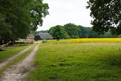 Landscape with old Dutch Farmhouse and barn (Leo Kramp) Tags: 2018 oudreemst landscape landschap veluwe wandelen loweproflipside300awii farm boerderij natuurfotografie flickr accessoires otterlo gelderland nederland nl websitelandschap