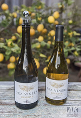 Pra Vinera Pinot Noir and Chardonnay (All About Light!) Tags: wine winereview foodpairing food foodie sf photographer arthurkochphotography