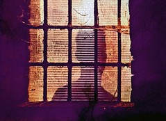 Behind the Bars (Matt Ley) Tags: prison bar mistero jail prigione shadow ombra purple viola arancio orange man isolamento imprisoned uncool uncool3 uncool4 uncool5 uncool6 uncool7 uncool8