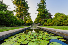 The Gardens at Skylands Manor (Michael.Greiner) Tags: lilypad state park new jersey