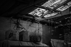 The Skylight (stujfoster) Tags: farm shed urbex gritty urban uk england