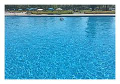 Piscine (' m x b c h r) Tags: iphone plage piscine lausanne eau bleu bellerive pool