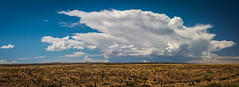 Desert Thunderstorm Gathering Thunderclouds! The Colorado Plateau & Grand Escalante Staircase! Epic Arizona Desert Landscape Fine Art Breaking Storm! Nikon D800 E & AF-S NIKKOR 28-300mm f/3.5-5.6G ED VR from Nikon Lens! Scenic Surreal Abstract Artistic! (45SURF Hero's Odyssey Mythology Landscapes & Godde) Tags: desert thunderstorm gathering thunderclouds the colorado plateau grand escalante staircase epic arizona landscape fine art breaking storm nikon d800 e afs nikkor 28300mm f3556g ed vr from lens scenic surreal abstract artistic