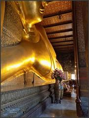 Bangkok Wat Pho Buddha 20180206_134624 DSCN2822 (CanadaGood) Tags: asia seasia asean thailand thai ราชอาณาจักรไทย bangkok krungthep watpho recliningbuddha buddha buddhist statue gold temple building architecture canadagood 2018 thisdecade color colour