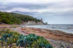 Jungfrun (anderswetterstam) Tags: nature rock sea water lickershamn landscape seascape beach shore shoreline trees rauk summer summertime overcast clouds sky