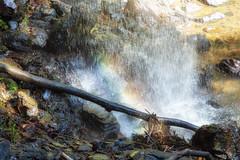 Rainbow in the falls (stevepaustin) Tags: rainbow waterfall rocks branch springbrook queensland australia au