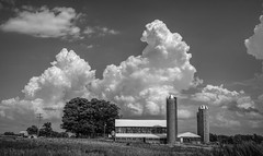 Billowing clouds over farm..... (Kevin Povenz Thanks for all the views and comments) Tags: 2018 august kevinpovenz westmichigan michigan farm clouds weather storm canon7dmarkii sigma blackandwhite bw sky stormy stormclouds stormyweather landscape