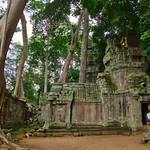 Trees overgrowing the temple ruins of Ta Prohm a.k.a. the jungle temple, Siem Reap, Cambodia thumbnail