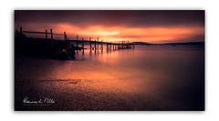 That's Just Peachy (RonnieLMills 5 Million Views. Thank You All :)) Tags: kinnegar jetty wooden pier high tide long exposure holywood county down northern ireland just peachy ronnielmills