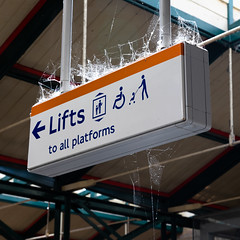 Spider citadel | London meandering-2 (Paul Dykes) Tags: railwaystation crystalpalace crystalpalacestation london england uk unitedkingdom southlondon web cobwebs sign