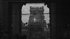 Madurai meenachi amman temple (karavindhcse) Tags: madurai meenachi amman temple