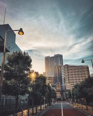 After Work (·Nico·) Tags: iphone8plus urban cityscape urbanlandscape vscocam vsco lightroom moody sunset shibaura tokyo japan