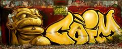 graffiti in Utrecht (wojofoto) Tags: utrecht nederland netherland holland graffiti streetart grindbak hof halloffame legalwall wojofoto wolfgangjosten coim