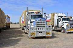 Kenworth T909 (quarterdeck888) Tags: trucks truckies transport australianroadtransport roadtransport lorry primemover bigrig overtheroad class8 heavyvehicle highway road truckphotos nikon d7100 movingtrucks jerilderietrucks jerilderietruckphotos quarterdeck frosty expressfreight generalfreight logistics overnightfreight highwayphotos semitrailer semis semi flickr flickrphotos condobolin droughtreliefteam droughtreliefforfarmers rapidreliefteam rrt wafarmers roadtrain haybales kenworth kenworthroadtrain wafarmersconvoy buyabale t909