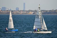 800_4958 (Lox Pix) Tags: queensland qld australia catamaran trimaran hyc humpybongyachtclub winterbash loxpix foilingcatamaran foiling bramblebay sailing race regatta woodypoint boat