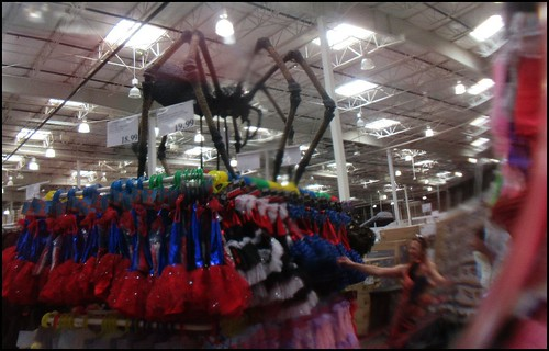 fx4383 spider