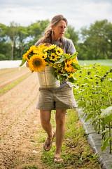 Jan Goranson (Kelsey Kobik) Tags: maine farminginmaine mainefarms farmer sunflowers summer