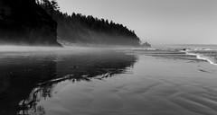 Ocean Mist (DavidCrouch1) Tags: washington pnw northwest water reflection bw blackwhite coast seastacks shoreline beach olympic