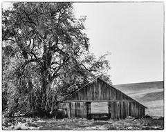 Vacancy - The Palouse, Washington (j-rye) Tags: 752lkg monochrome blackandwhite bw sonyalpha sonya6000 sony a6000 ilce6000 mirrorless